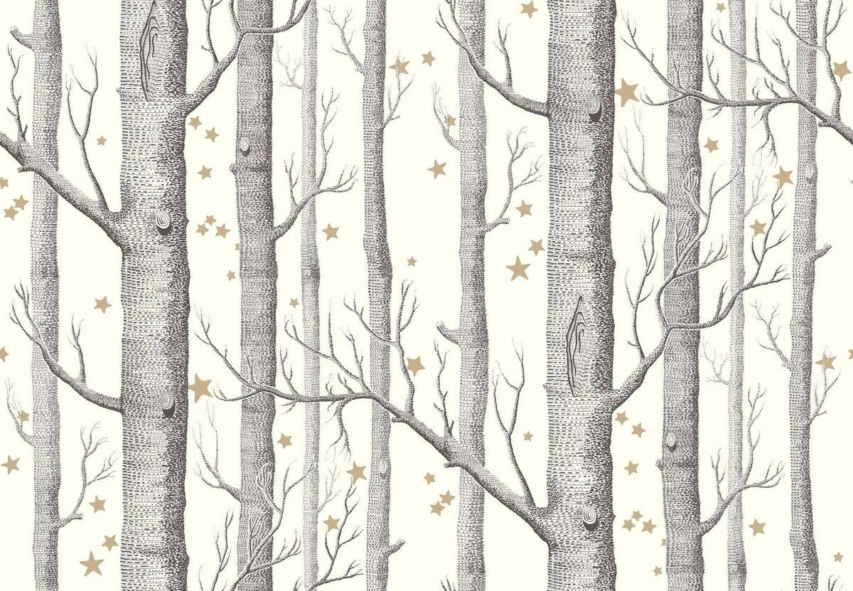 cole and son woods and stars wallpaper black and white