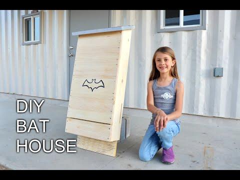 How to Build a DIY Bat House