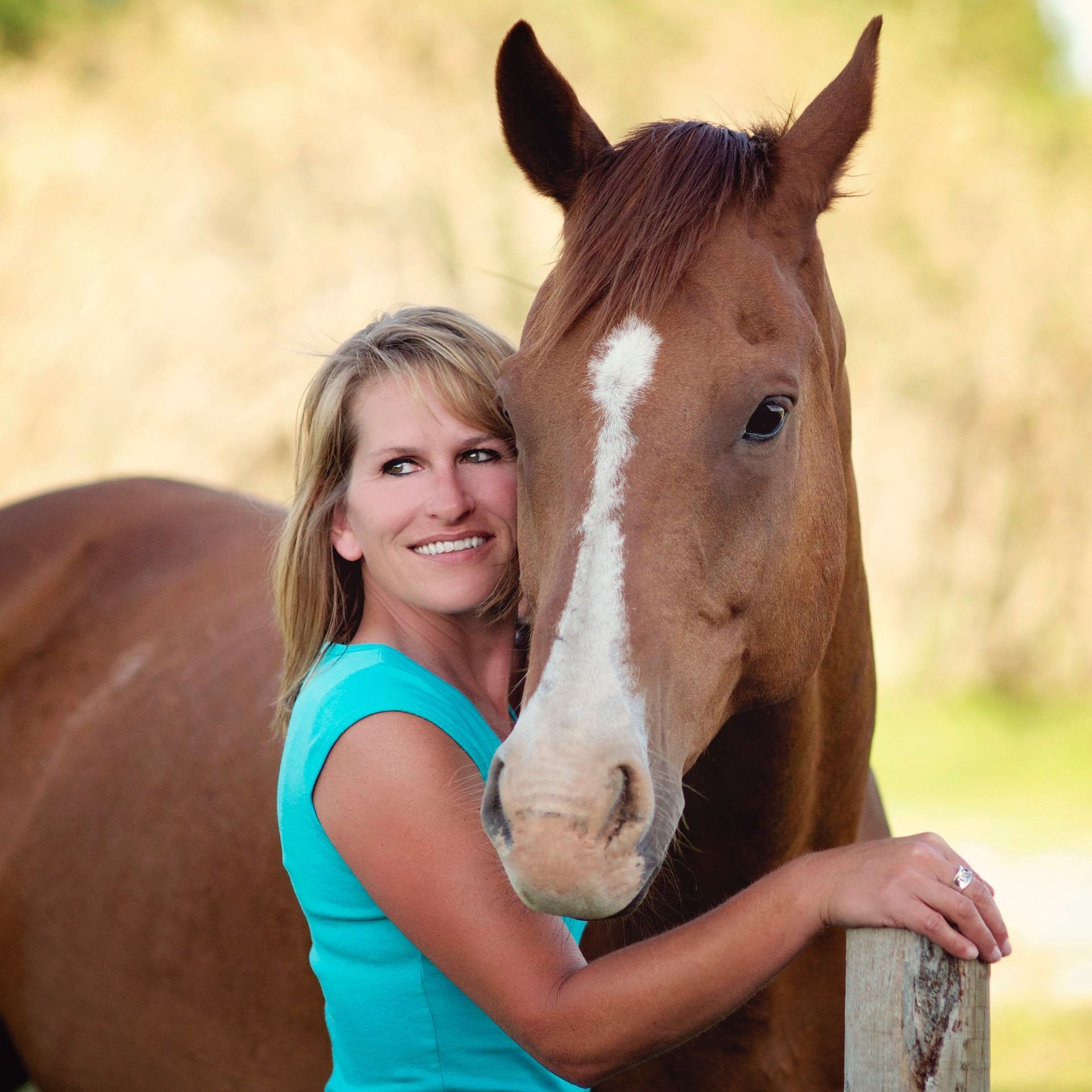 SIKANTISPETS Best books about how to care for your horse