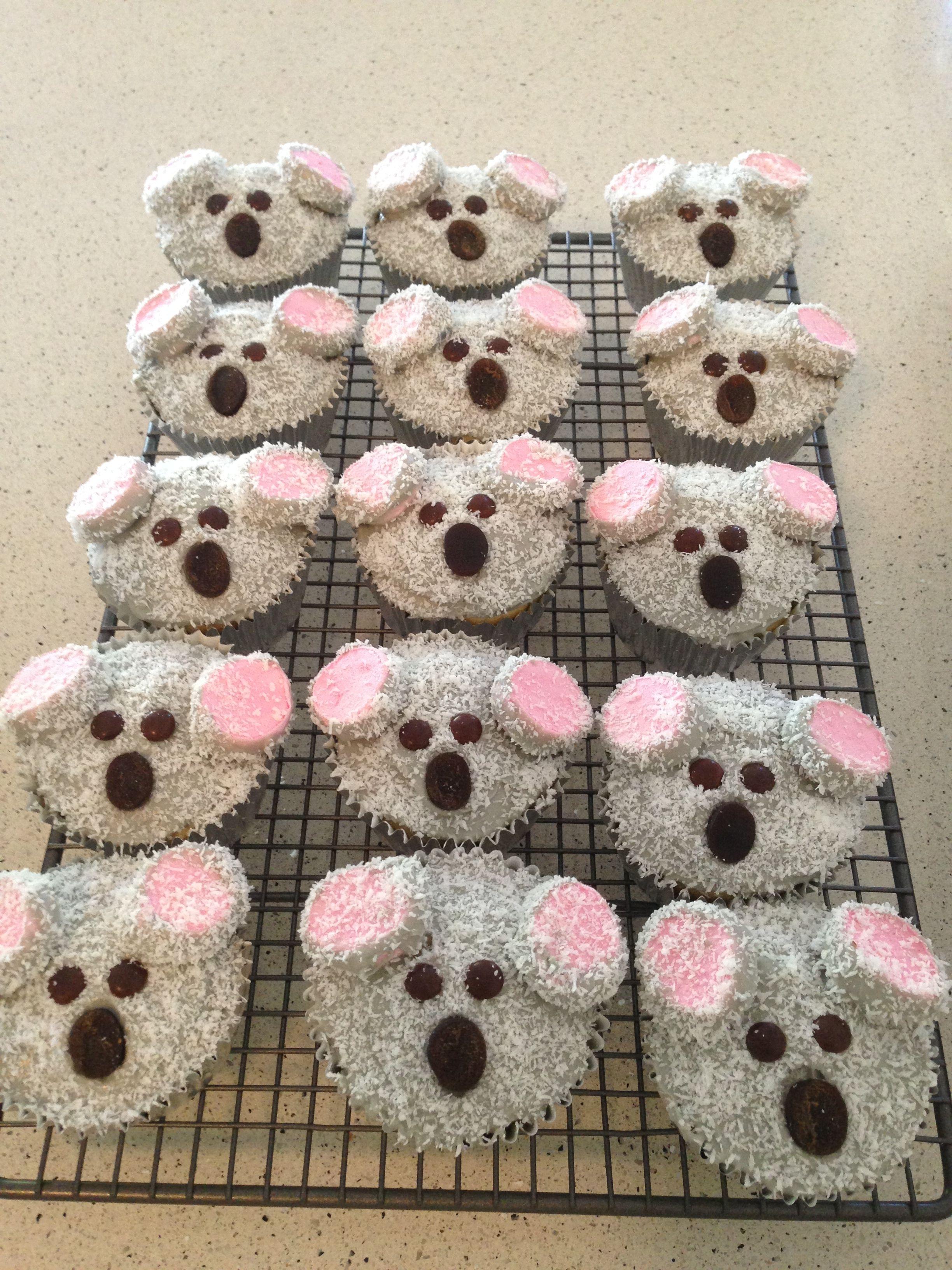Koala cupcakes. Australia cupcakes. Australia party