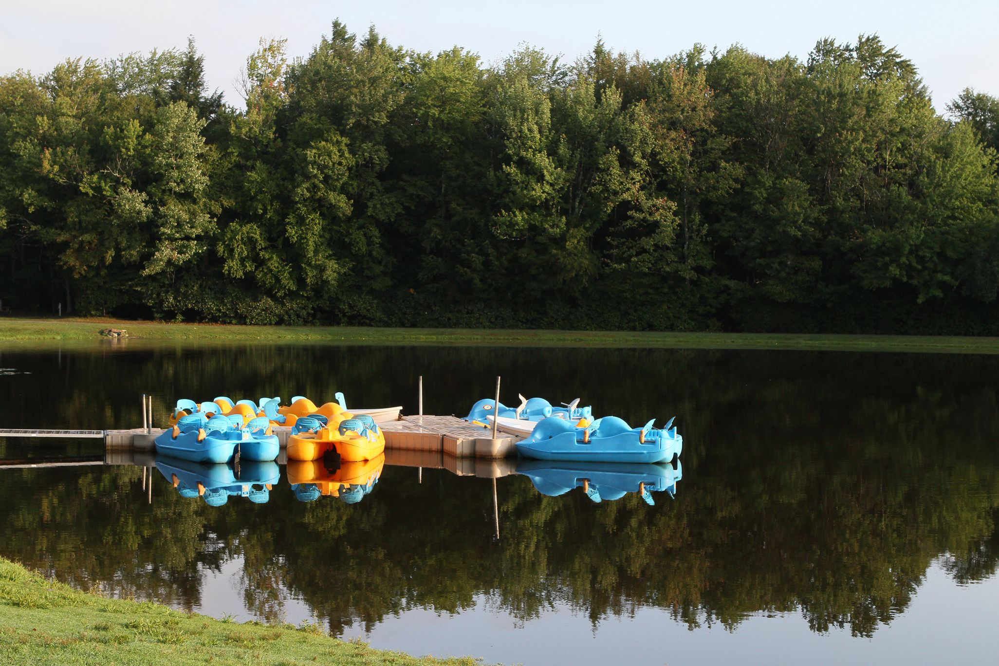 Enjoy paddle boating and fishing on our 5acre lake