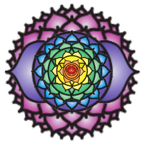 "Chakras are ""energy centres"" permeating from specific points on the body. They can also be perceived as the electro-magnetic field surrounding the body,  known as the Aura or Light body. The Chakras, are considered the focal points for the reception and transmission of energies, taking in the useful and pure frequencies directed by Reiki and recycling the light body's unwanted or depleted energies."