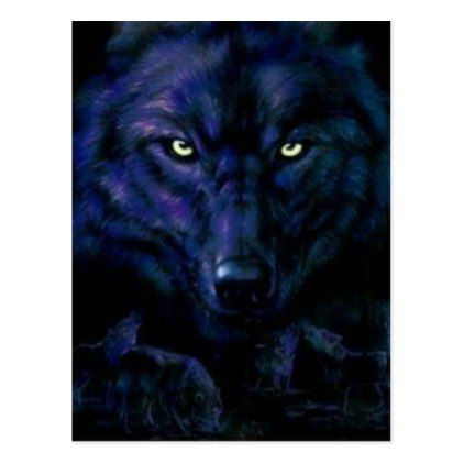 The Black wolf Postcard