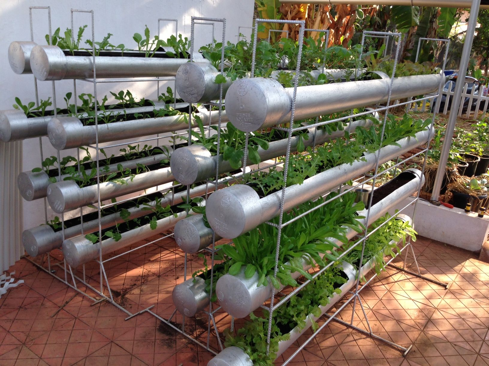 Terrace Gardening Vegetables Sad Idei