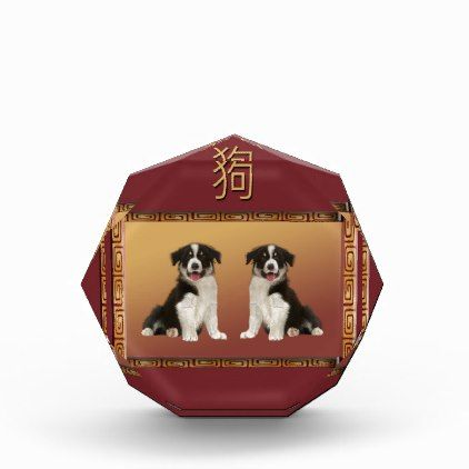 border collies on asian design chinese new year acrylic award