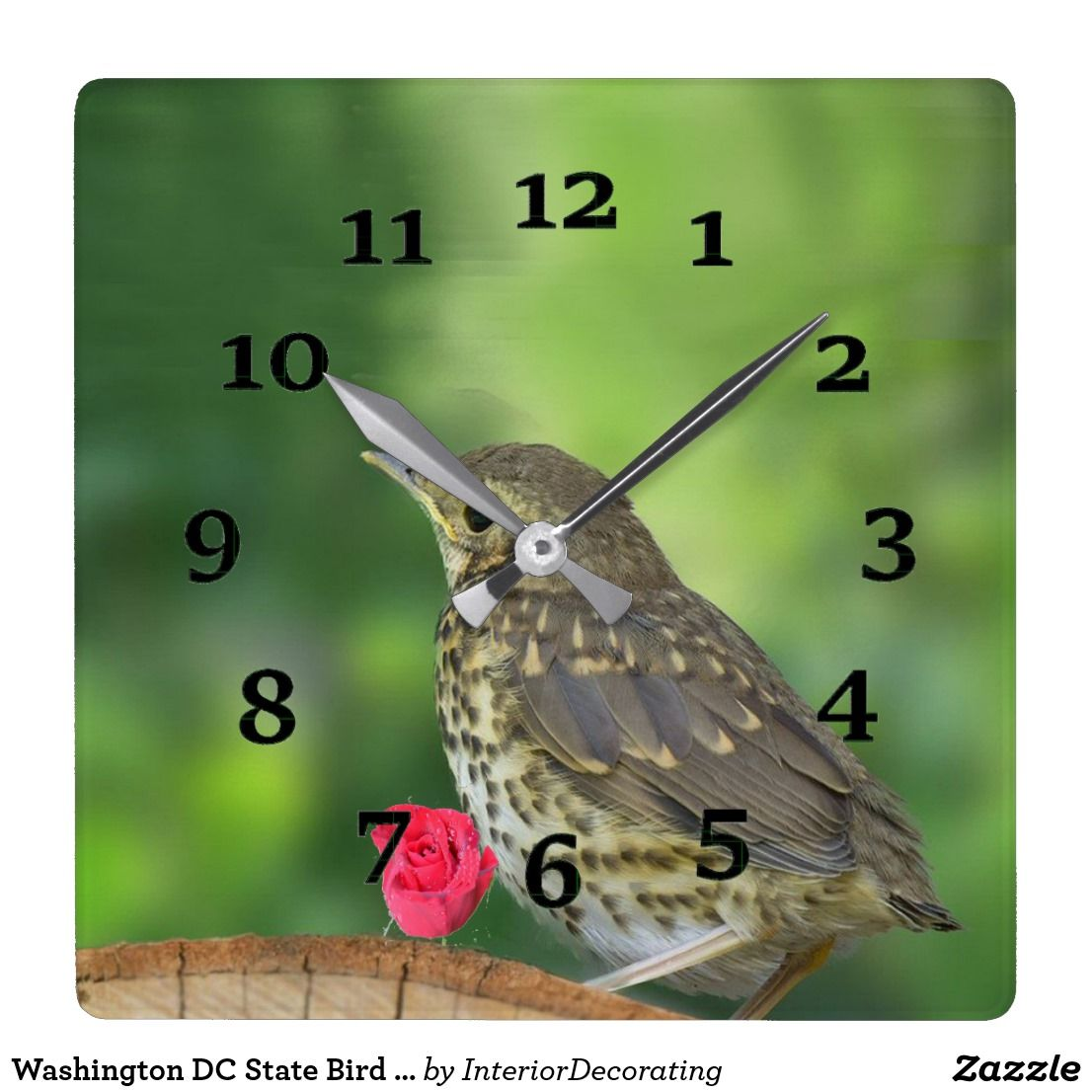 Washington Dc State Bird And Flower Square Wall Clock