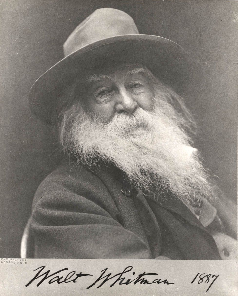 ( - p.mc.n.) Walt Whitman - An icon of American poetry. Also the first known gay poet