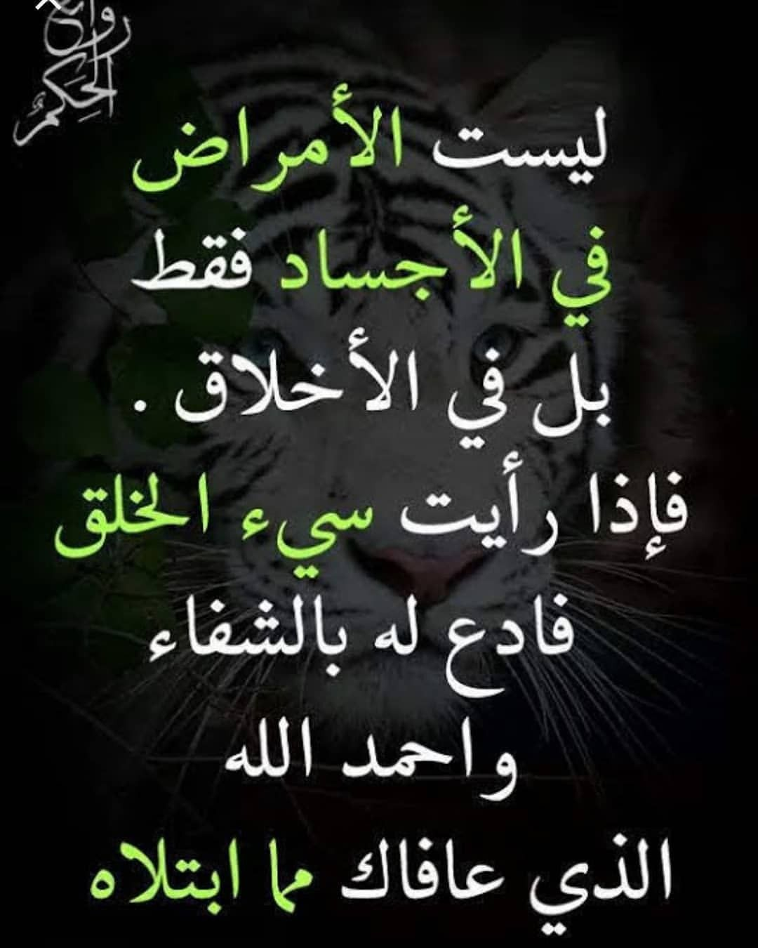 Pin By Liyana Ly On I Love Allah Quran Islam The Prophet Miracles Hadith Heaven Prophets Faith Prayer Dua حكم وعبر احاديث الله اسلام قرآن دعاء Proverbs Quotes Cool Words Book Quotes