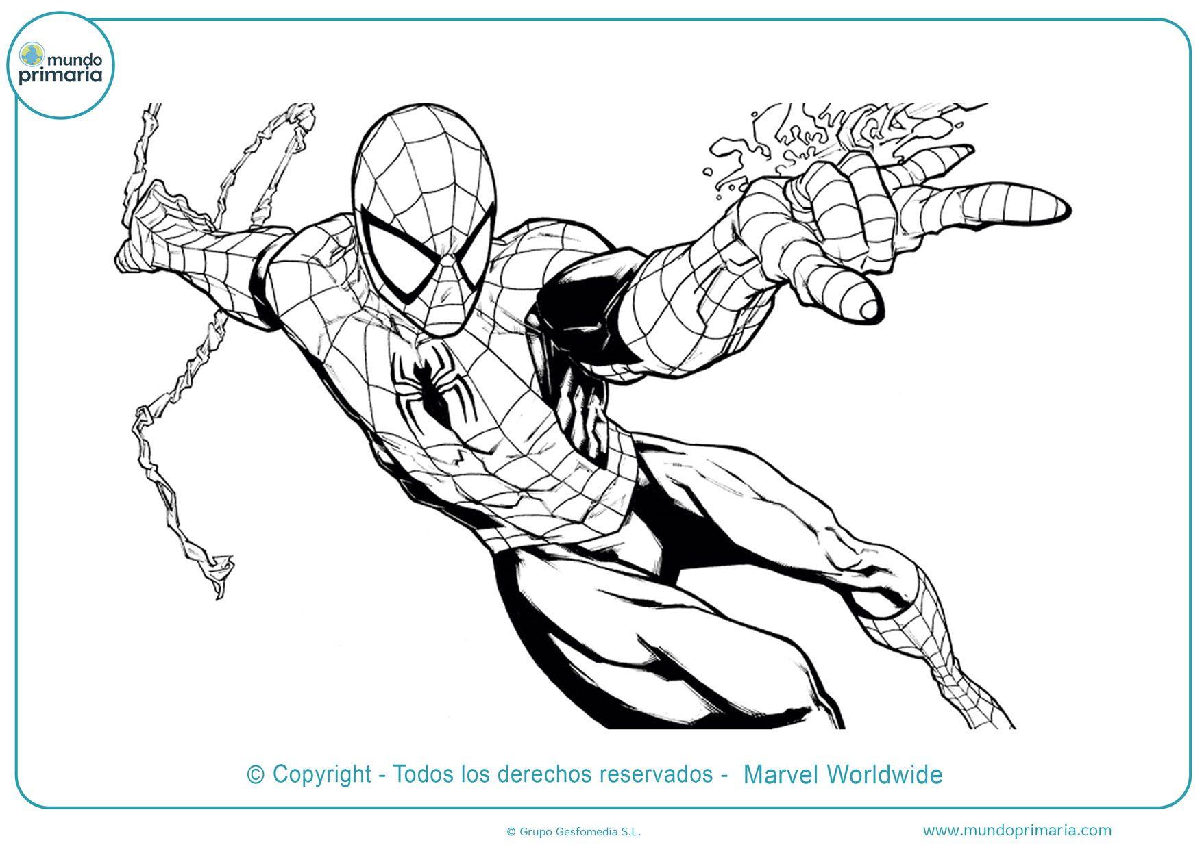 Imagenes Del Hombre Arana Para Imprimir Para Colorear Busqueda De Google En 2020 Hombre Arana Para Pintar Spiderman Dibujo Dibujos Unicos