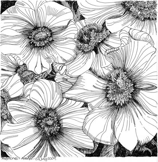 Artwork · pen and ink flower