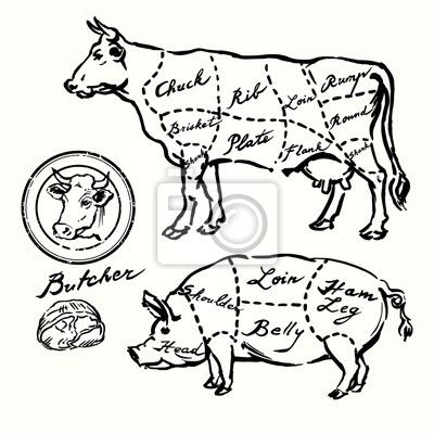 Wall Mural Pork And Beef Cuts