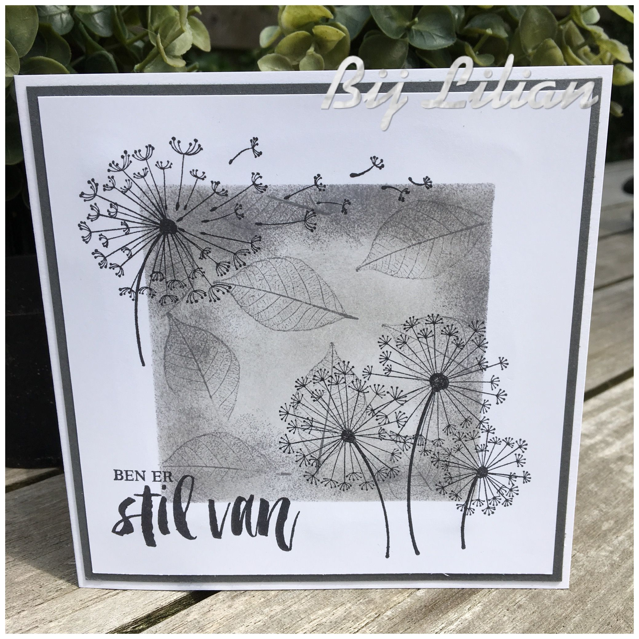 Stampin Up Dandelion Wishes Made By Lilian Goudzwaard Dandelion Wish Flower Cards Sympathy Cards
