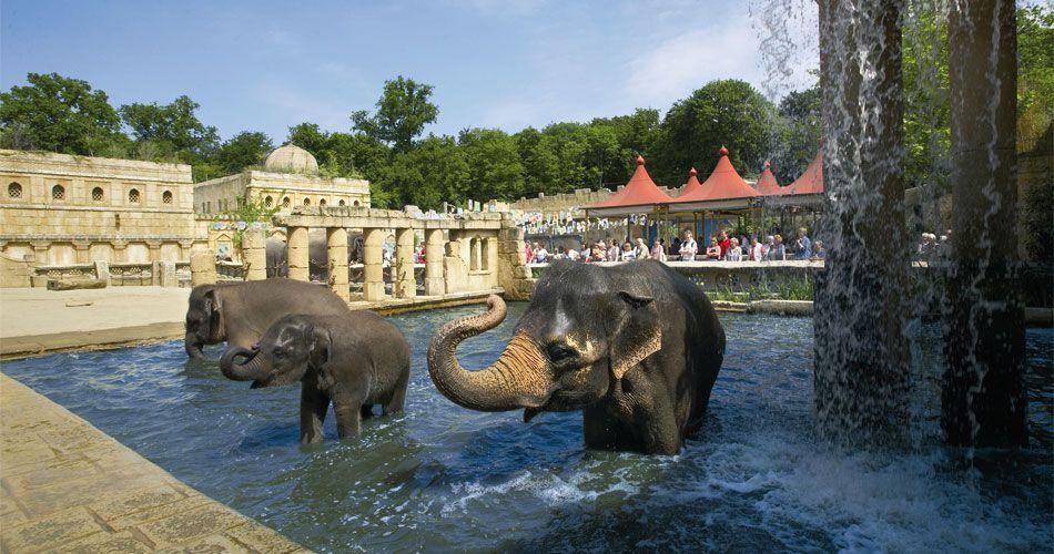 Themenwelten | Erlebnis Zoo Hannover