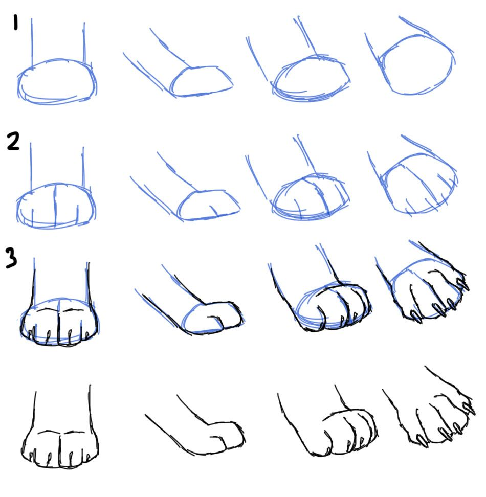 How to Draw Cat Paws | draw is life | Pinterest | Cat paws, Cat and ...