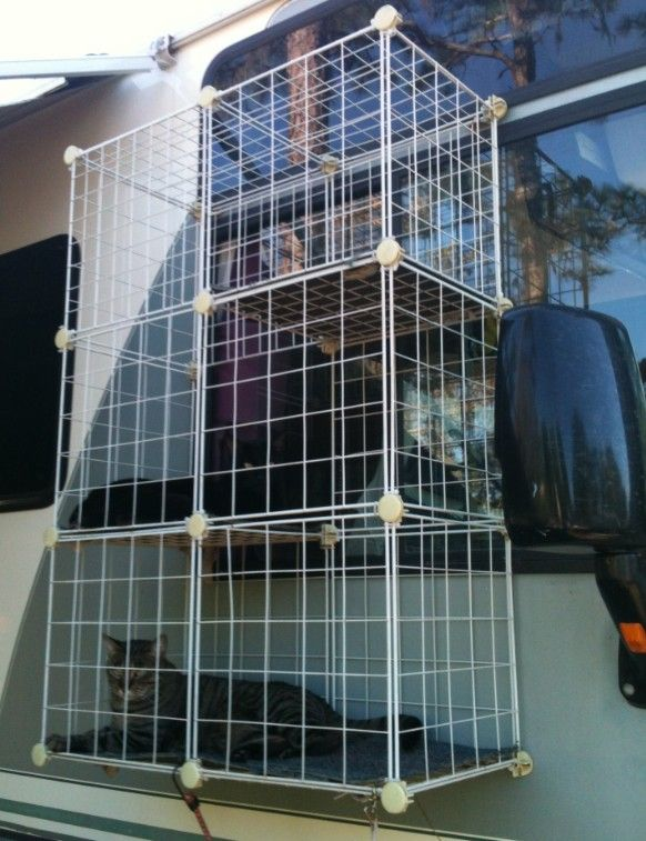 Diy Cat Enclosure For Rv Made From Storage Cubes And Zap
