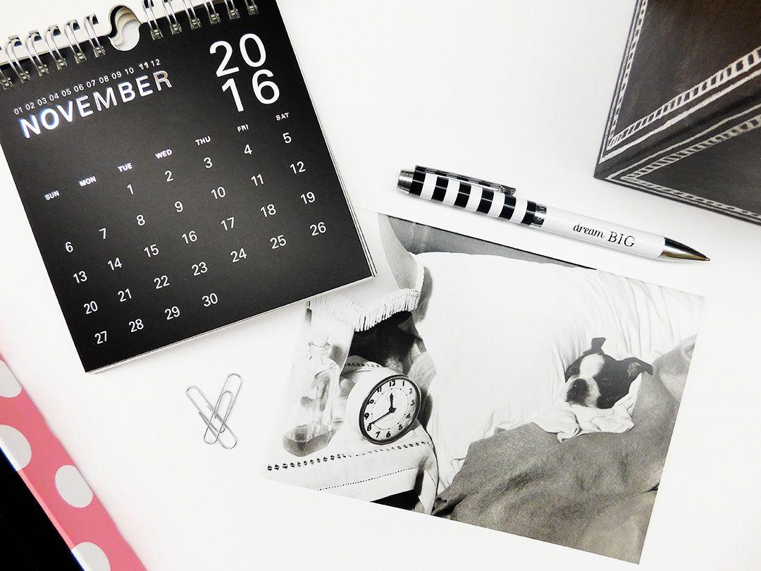 Sleeping Dogs Lie Get Well Card And Wall Street Desk Calendar From
