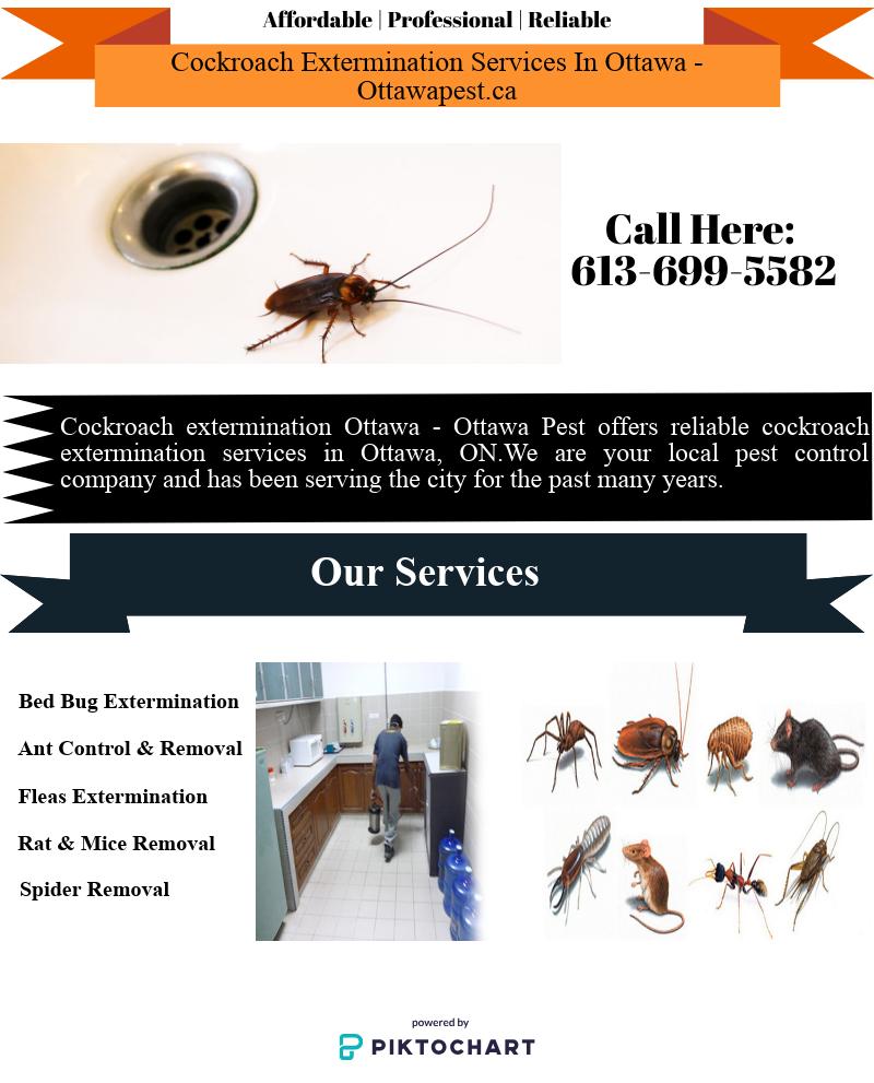 Cockroach Extermination Services In Ottawa Cockroach Extermination Cockroaches Ottawa