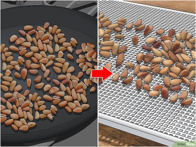 How To Roast Pine Nuts Pine Nuts Toasted Pine Nuts Nuts