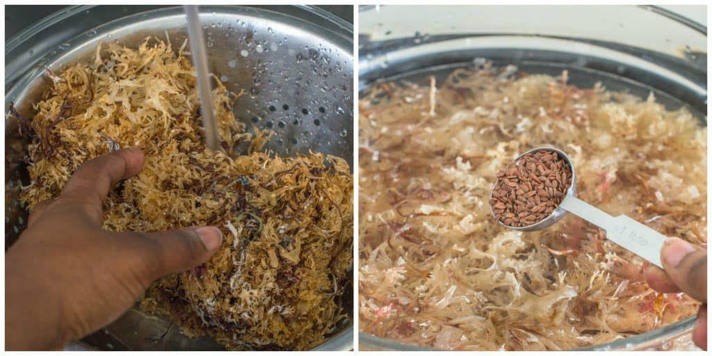 Sea moss drink (Irish moss drink) Recipe Healthy