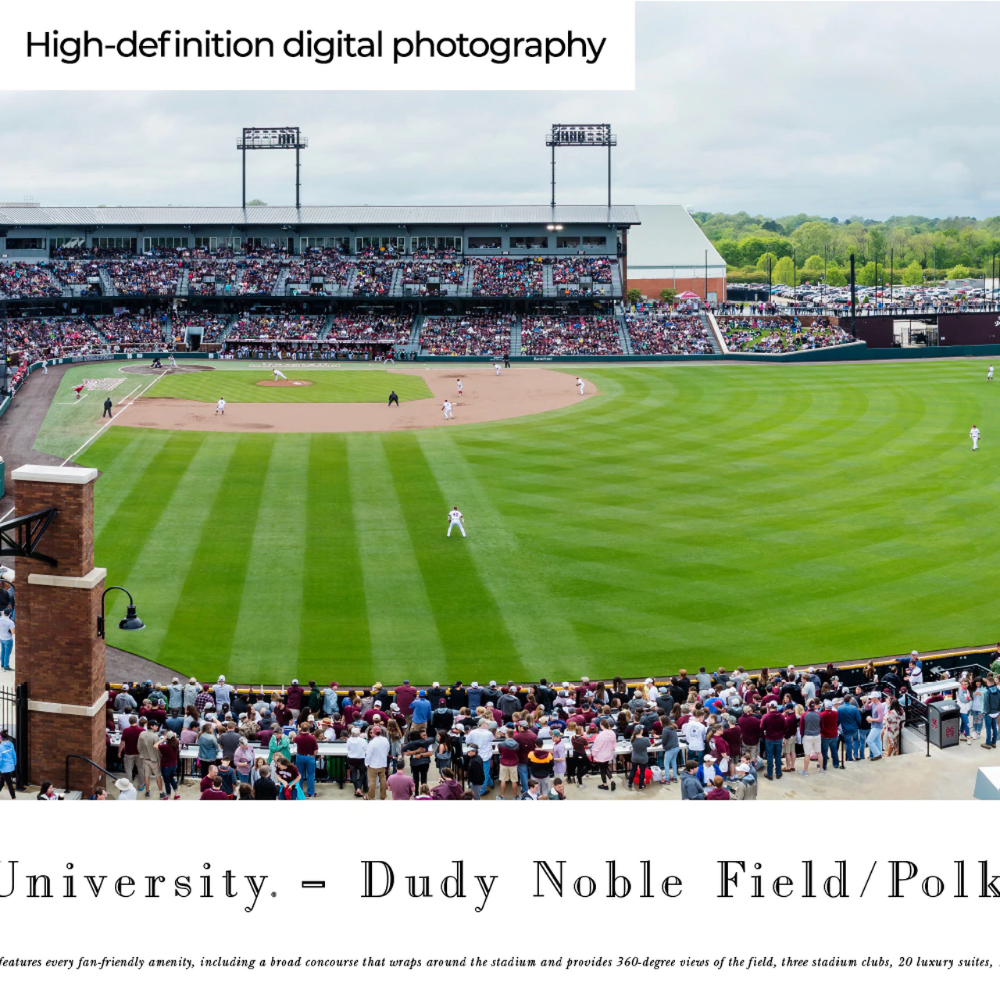 Mississippi State Bulldogs Baseball Poster Dudy Noble Field Panorama In 2020 Mississippi State Mississippi State Bulldogs Mississippi