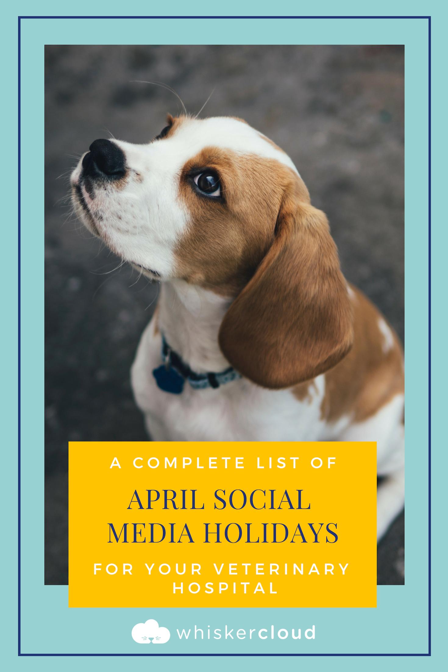 Complete List Of Social Media Holidays For Veterinary Hospitals Veterinary Hospital Veterinary National Dog Week