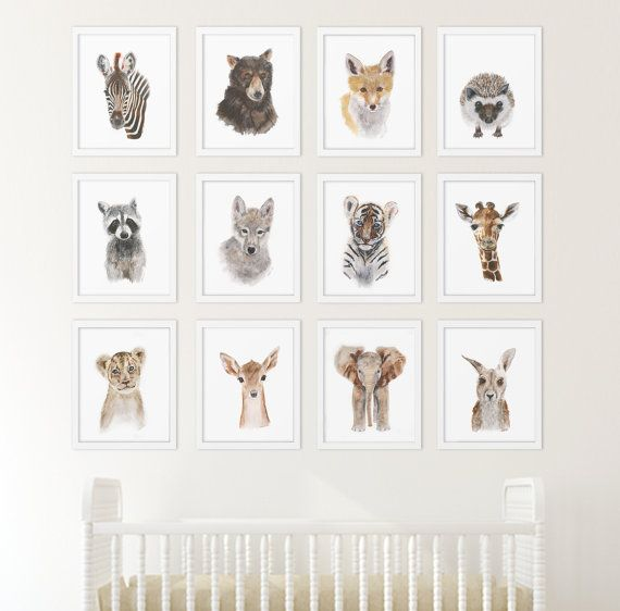 Set Of 12 Prints Animal Art Collection Nursery Home