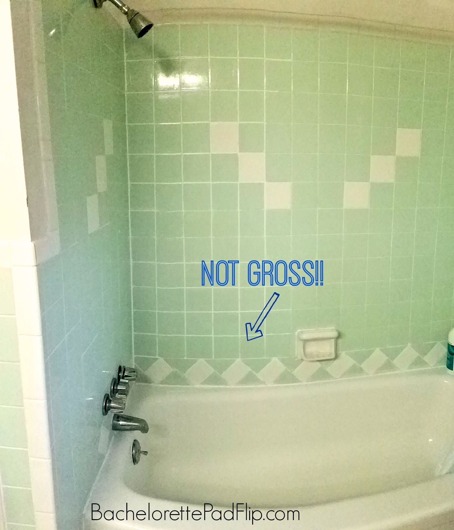 How To Get Rid Of Mold Mildew In A Shower Bachelorette Pad Flip In 2020 Mold In Bathroom Shower Mold Get Rid Of Mold