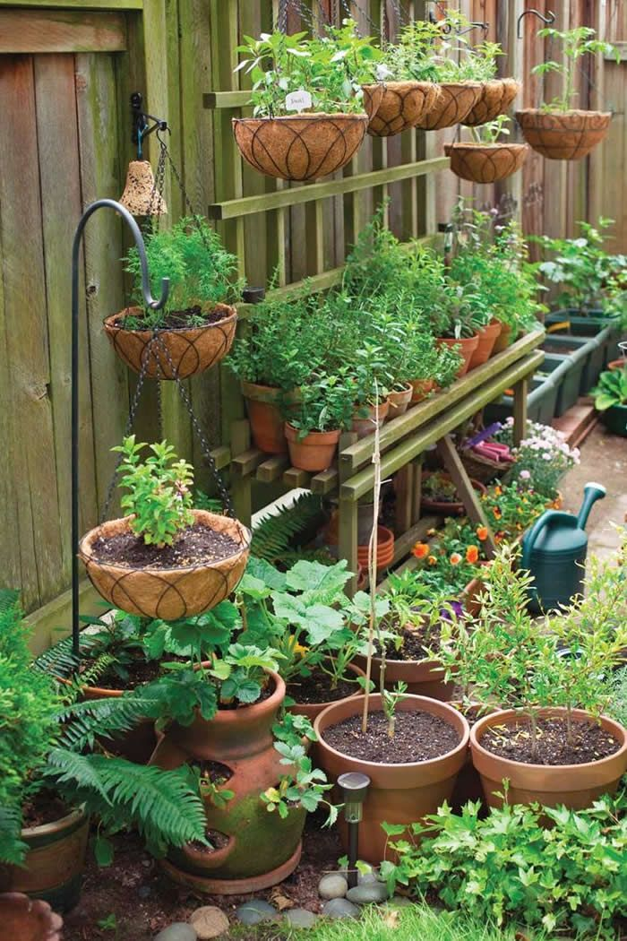 Expert Home Gardening Tips For Beginners Small Vegetable Gardens