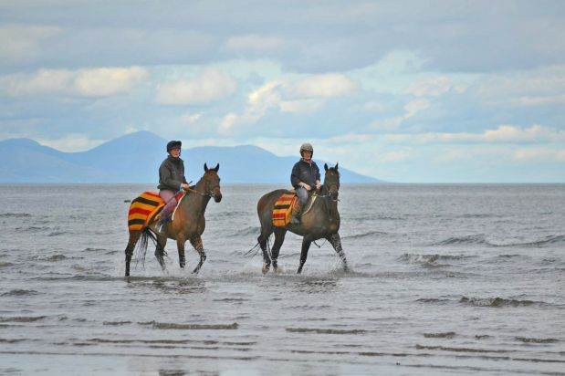 The Laytown Strand Races is the only beach-based event left in Europe that adheres to official horse-racing rules.