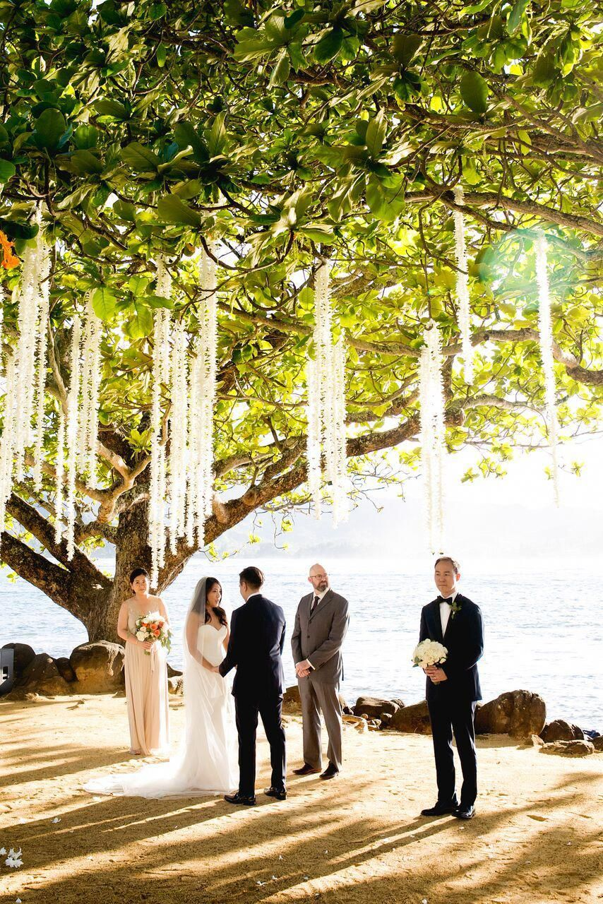 Special wedding photography poses attain creative