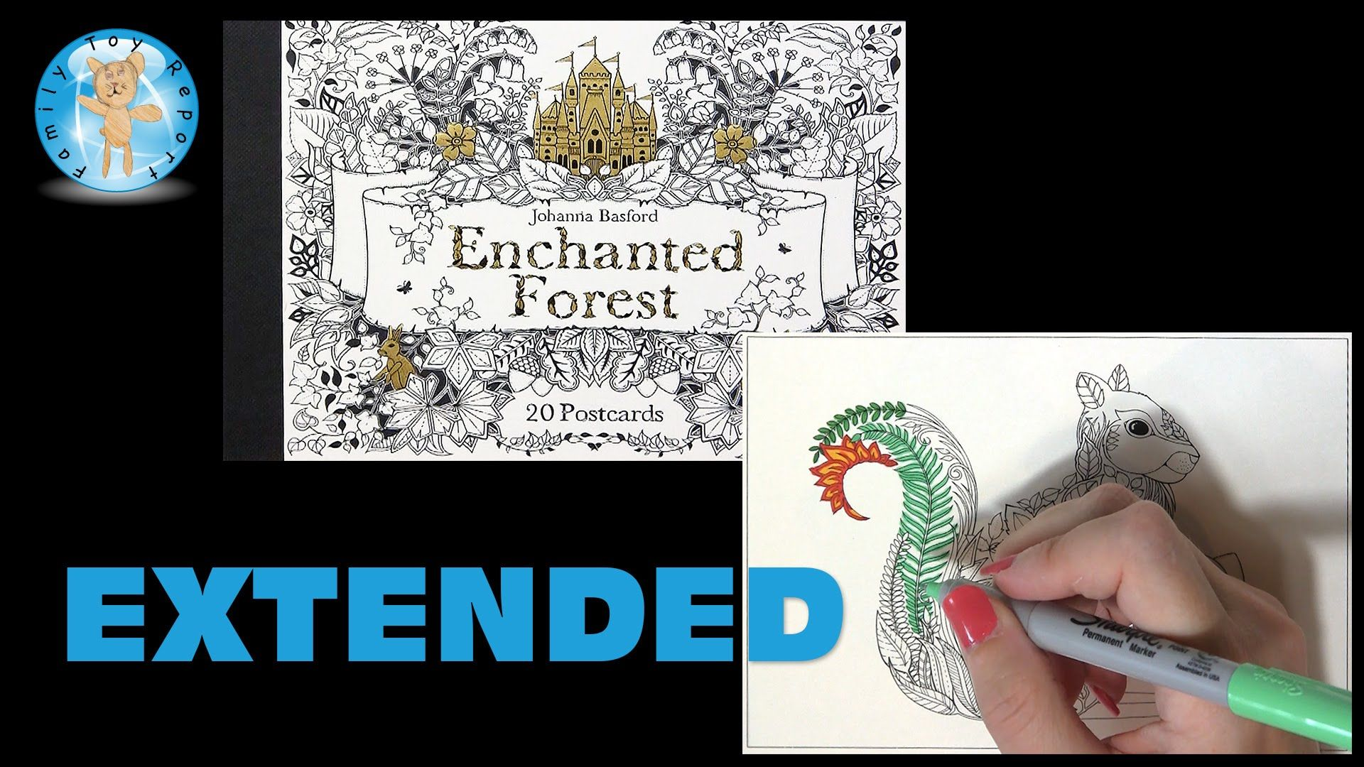 Enchanted Forest Johanna Basford Adult Coloring Book Postcards Squirrel