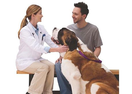 Free Health Checkup For Your Pet At Petsmart Pet Insurance Reviews