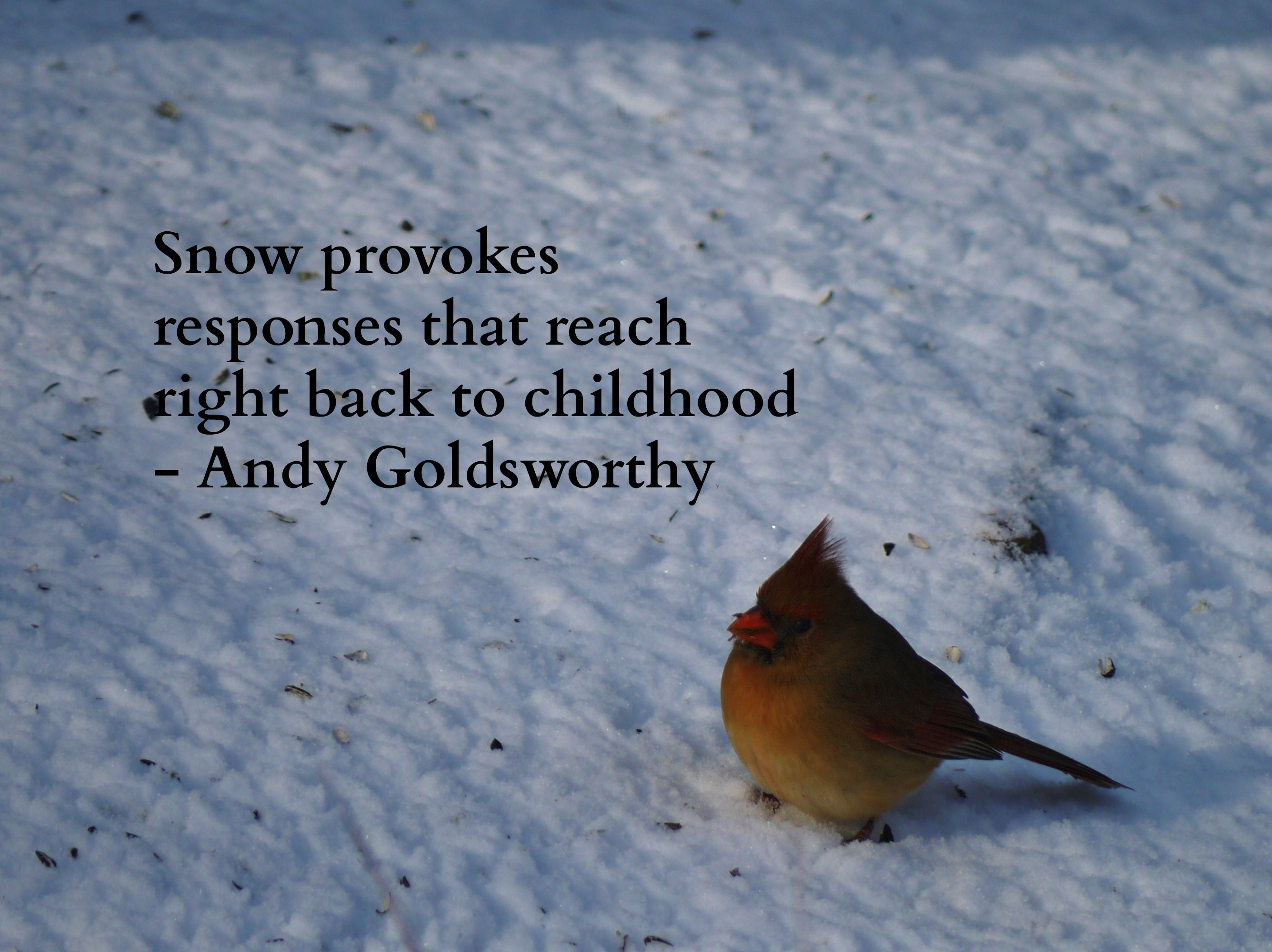 """""""Snow provokes responses that reach right back to"""