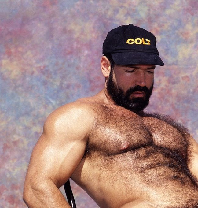 VINTAGE COLT MODELS: CARL HARDWICK | Muscle | Pinterest