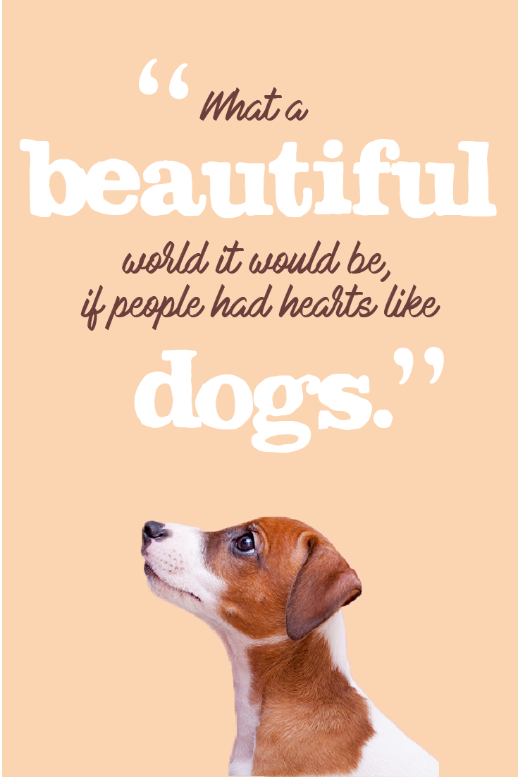 Dog Quote Quotes About Love Las Vegas Quotes About Peace Inspirational Quotes