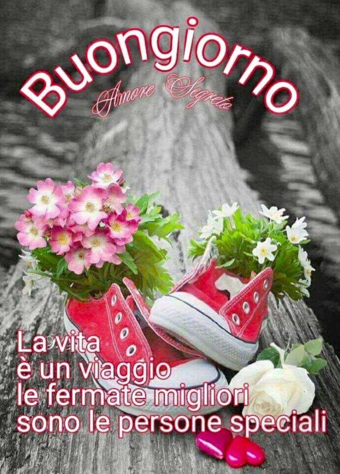 Immagini Buongiorno Favolose 6 Buongiorno Amore Auguri