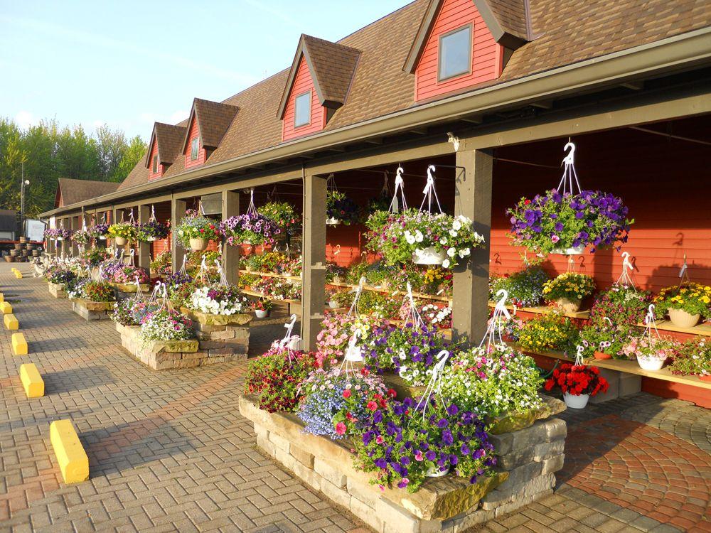 Good Excellent Idea On Coastal Landscaping Garden Center York Me