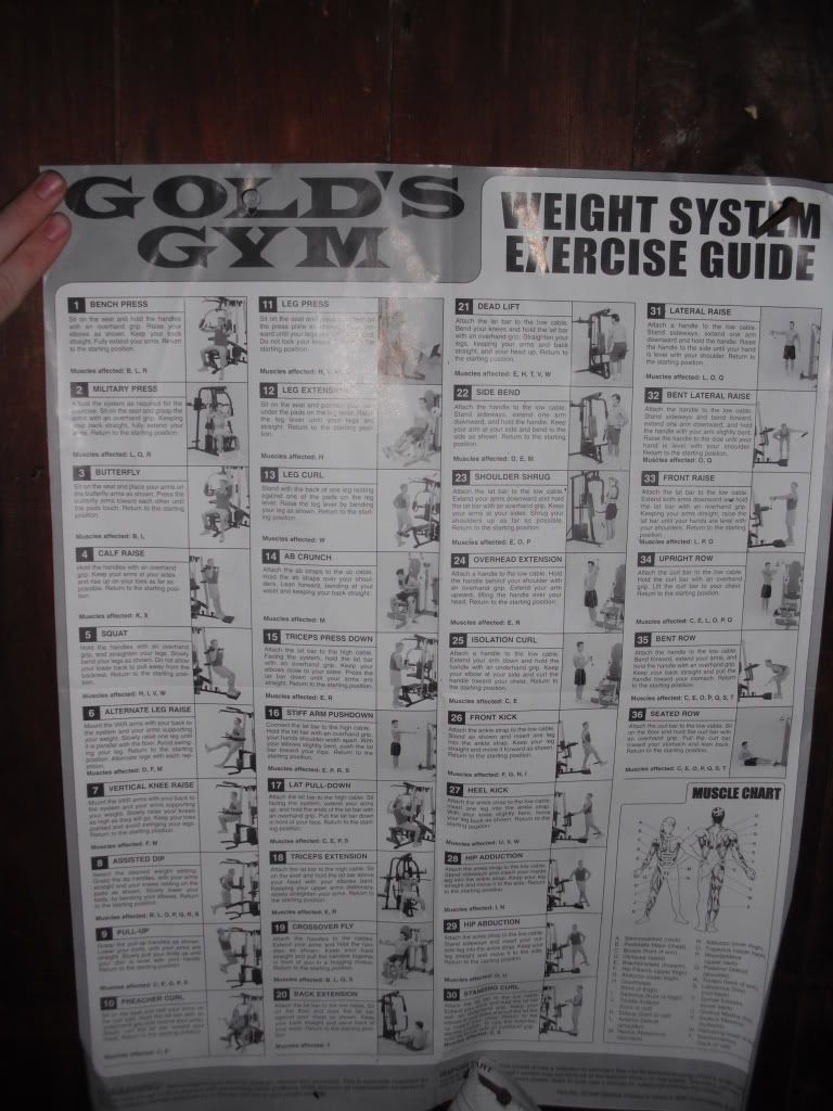 Gold gym xr45 workout routine classycloudco work out