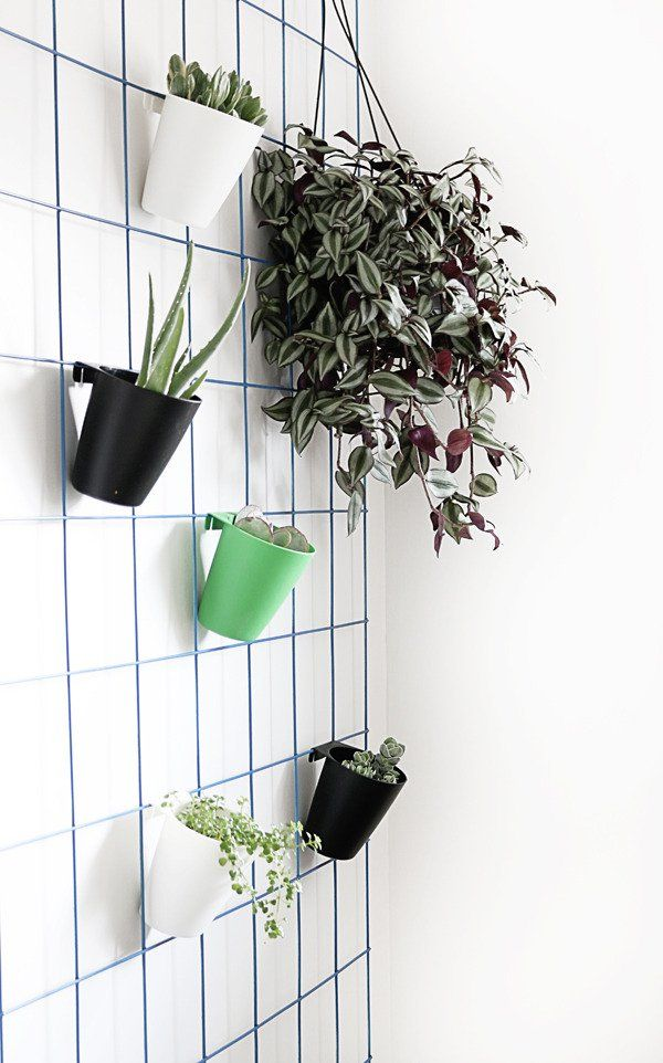 Make This Super Easy Diy Hanging Plant Wall Diy Decor