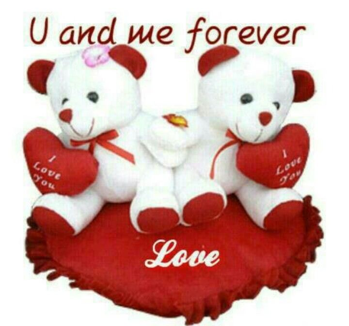Cute teddy bear images with love quotes