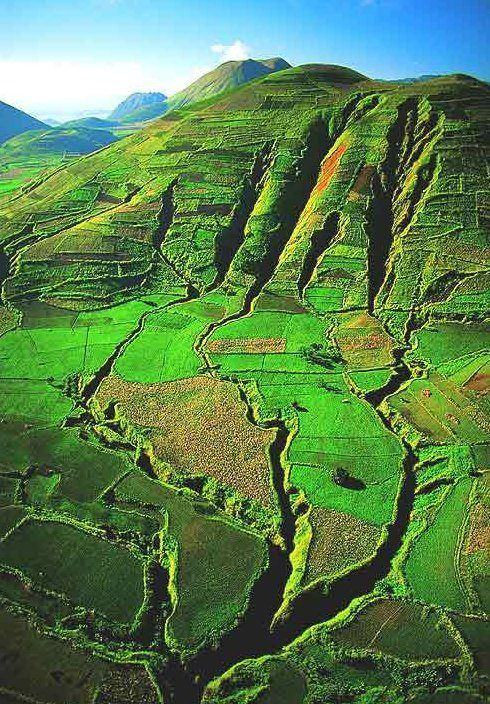 Beautiful Madagascar http://www.travelandtransitions.com/destinations/destination-advice/africa/