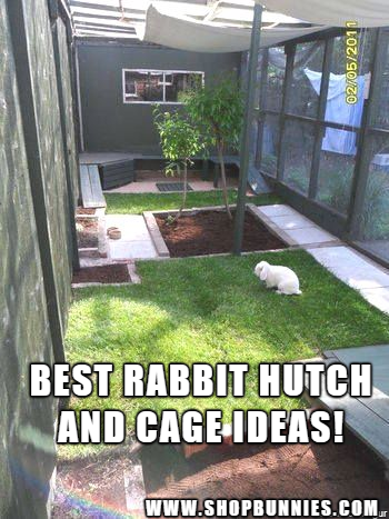 Photo of Gifts For Rabbit Lovers – Under $50-     Best rabbit hutch ideas…..           …