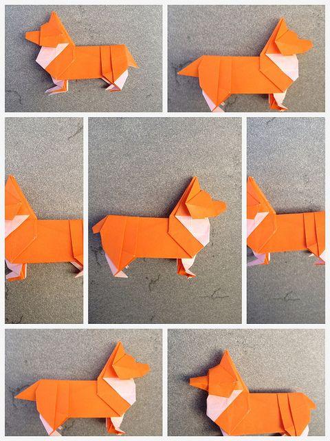 Corgi Steps Origami Corgi And Corgi Dog