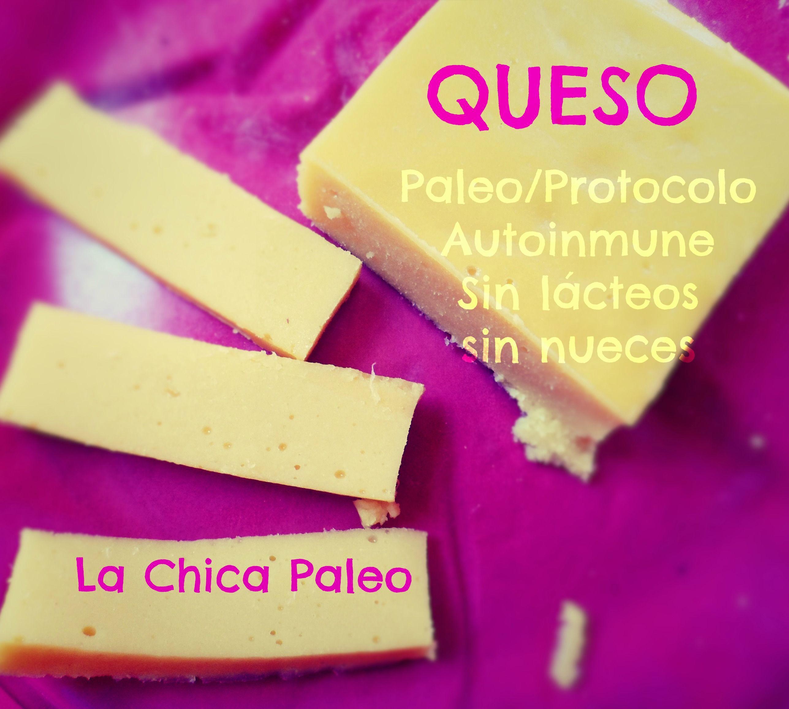 Queso Paleo – 100% paleo/protocolo autoinmune (sin nueces, sin lácteos)