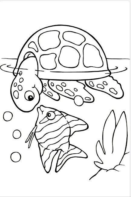 Pez y tortuga | Rajz | Pinterest | Tortuga, Colorear y Dibujo