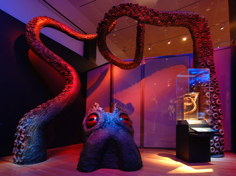 Kraken Model Cleveland Museum of Natural History
