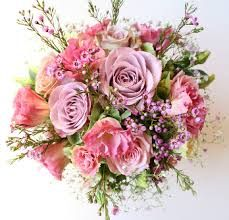 Image result for dusky pink flowers