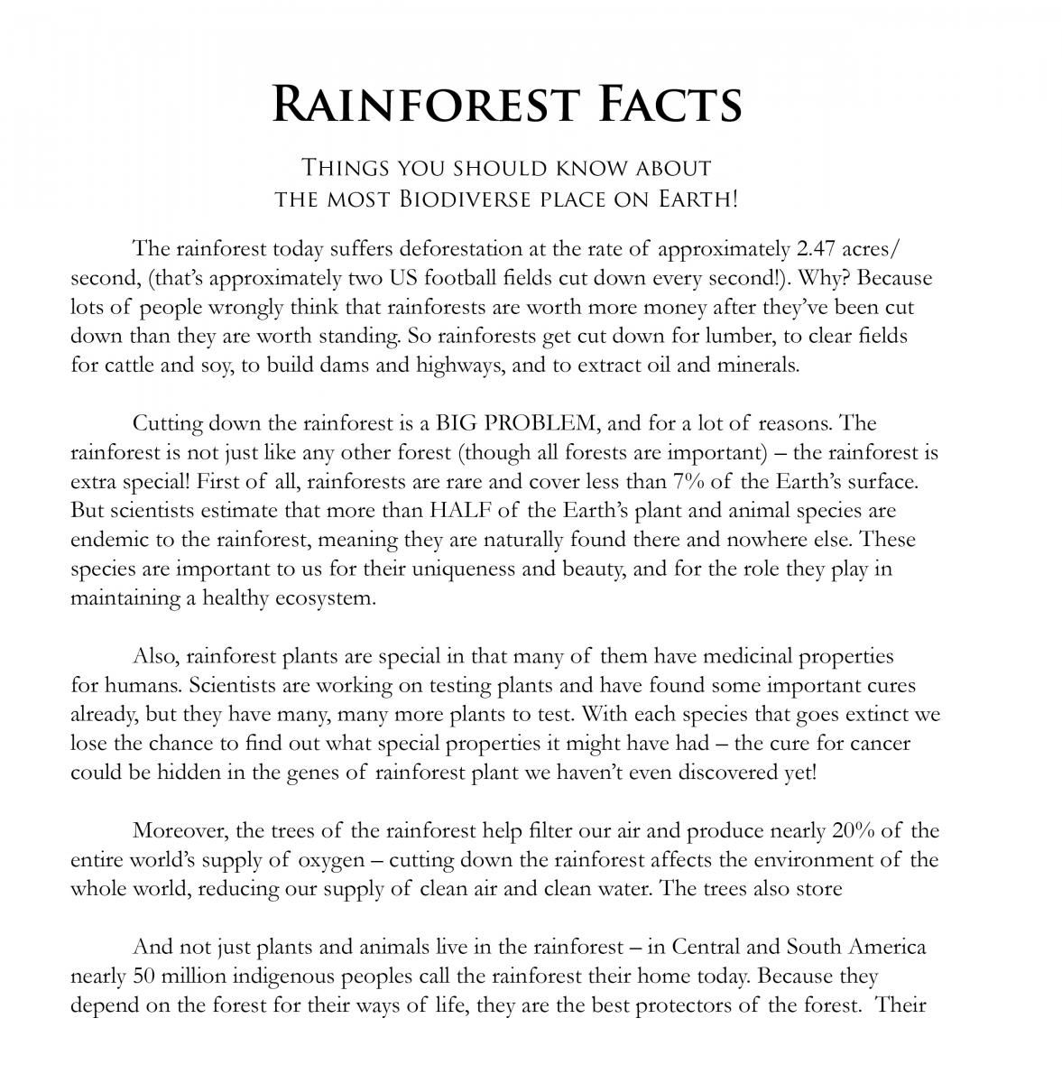 Rainforest Games and Worksheet Activities | Rainforest Foundation US ...