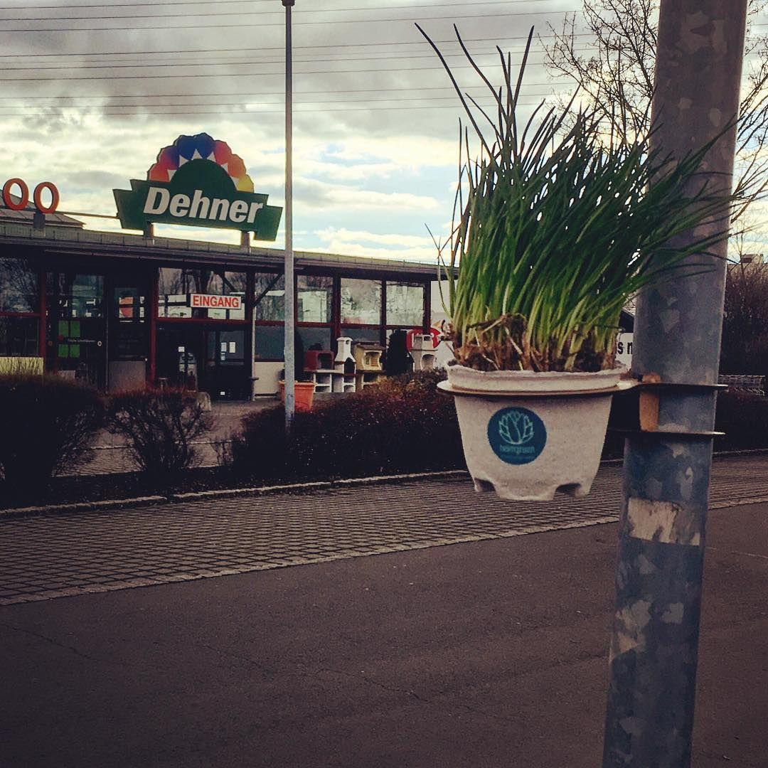 Wie Cool Ist Das Denn Da Wirbt Jemand Mit Betongruen Bei Der Konkurrenz Flowerpot Opengardening Nachhaltigkeit Urbang Instagram Nachhaltigkeit Eingang