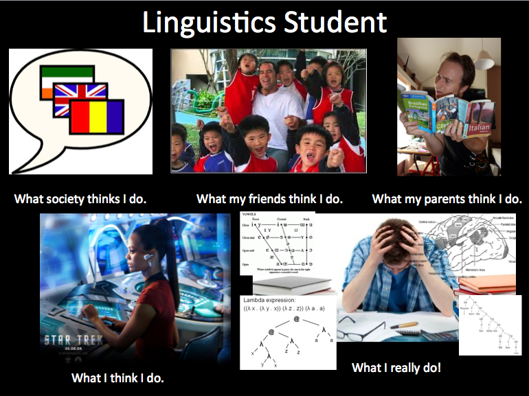 Others expectations about linguistics student !